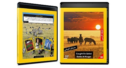 مستند سفرهای افریقایی
