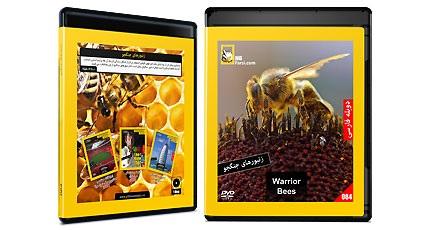 مستند زنبورهای جنگجو