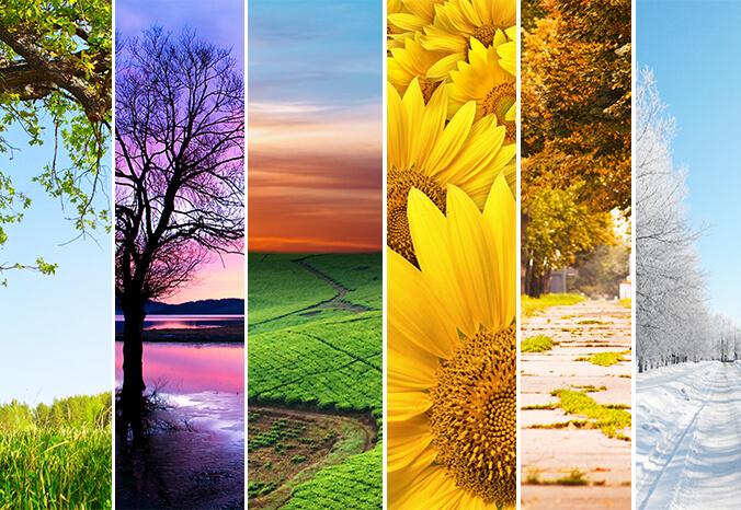 استوک منظره و طبیعت